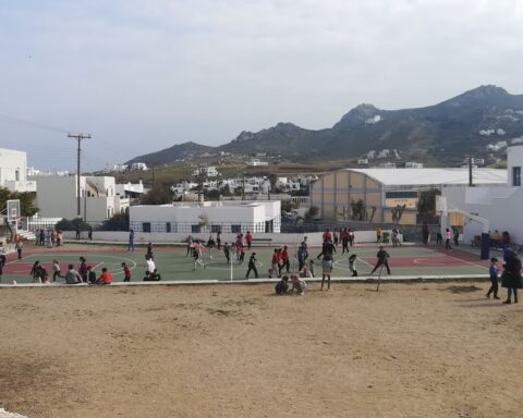 4ο δημοτικό σχολείο Νάξου: Το κλάδεμα των δέντρων που τα κλαδιά τους είχαν γείρει πάνω από τα κεφάλια των μαθητών