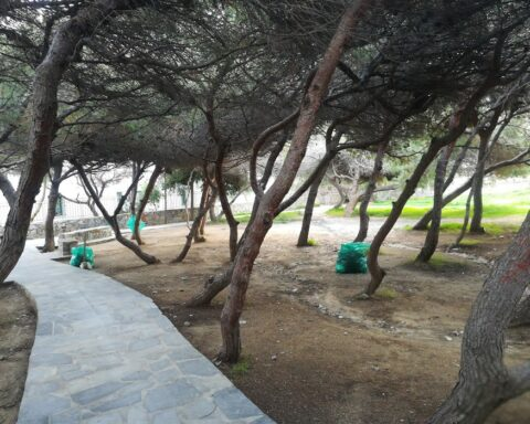 """Κοινότητα Νάξου: """"Η καθαριότητα της πόλης και η προστασία του περιβάλλοντος είναικοινωνικά αγαθά και επιτυγχάνονται με τη συνεχή συνεργασίαΚοινότητας - κατοίκων - πολιτών και του Δήμου"""""""