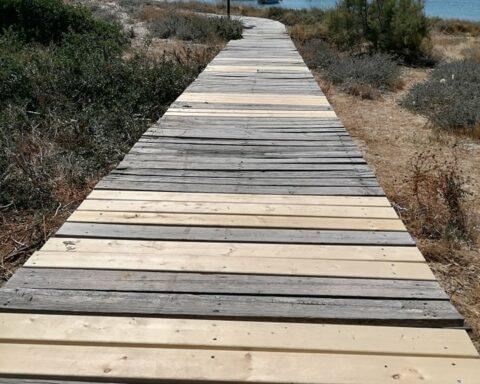 Εγινε ξανά προσβάσιμος ο ξύλινος διάδρομος στο κεδροδάσος της Αγίας Άννας