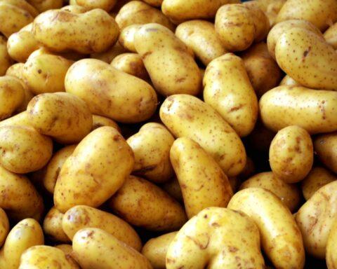 Σε ανάκληση πατάτας προχώρησε επιχείρηση λιανικής πώλησης